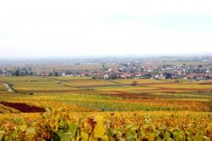 Blick vom Michelberg auf Hainfeld